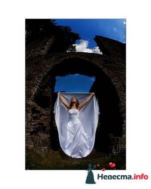 Фото 84877 в коллекции Свадьба - Свадебный распорядитель. Яна