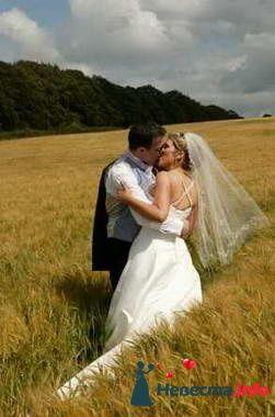Фото 84878 в коллекции Свадьба - Свадебный распорядитель. Яна