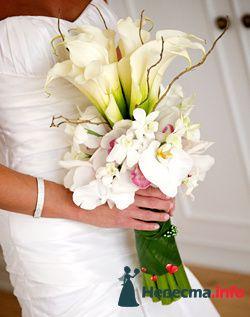 Фото 96617 в коллекции Букет Невесты - Свадебный распорядитель. Яна