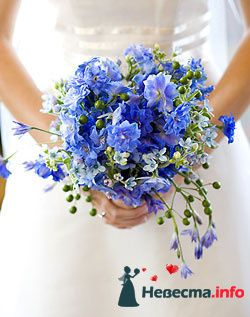 Фото 96620 в коллекции Букет Невесты - Свадебный распорядитель. Яна