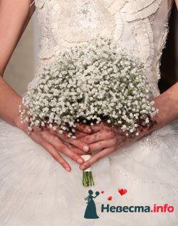Фото 96636 в коллекции Букет Невесты