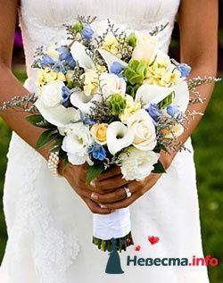 Фото 96655 в коллекции Букет Невесты - Свадебный распорядитель. Яна
