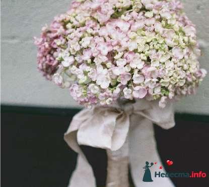 Фото 96659 в коллекции Букет Невесты - Свадебный распорядитель. Яна