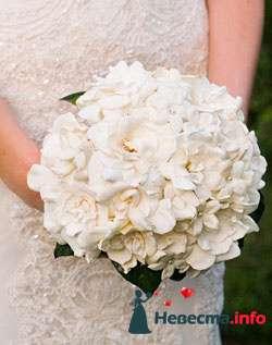 Фото 96685 в коллекции Букет Невесты - Свадебный распорядитель. Яна