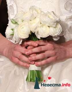 Фото 96692 в коллекции Букет Невесты - Свадебный распорядитель. Яна