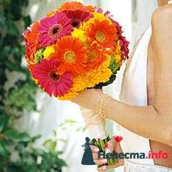 Фото 96693 в коллекции Букет Невесты - Свадебный распорядитель. Яна