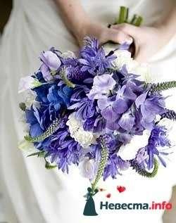 Фото 96703 в коллекции Букет Невесты - Свадебный распорядитель. Яна