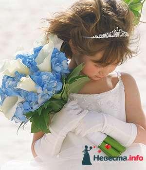 Фото 96710 в коллекции Букет Невесты - Свадебный распорядитель. Яна