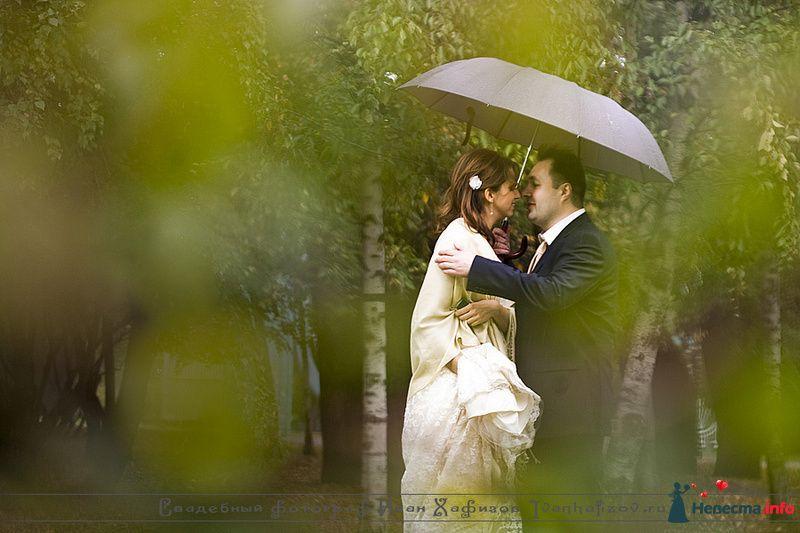 Фото 93204 в коллекции Репортажные свадебные фотографии