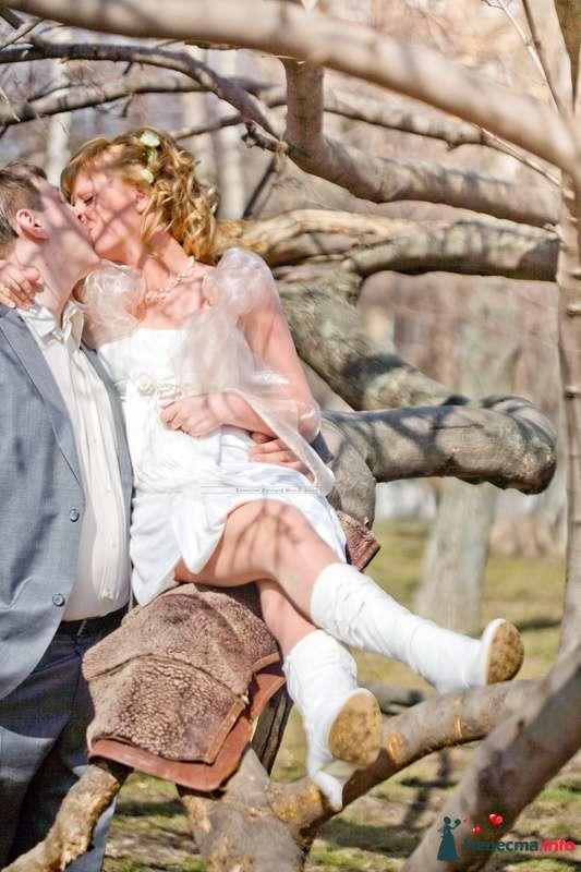 Фото 99632 в коллекции Репортажные свадебные фотографии - Ваш свадебный фотограф Иван Хафизов