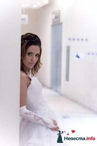 Фото 82478 в коллекции Мои фотографии - Невеста01