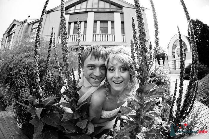 Жених и невеста, прислонившись друг к другу, стоят на фоне зелени  и здания - фото 82889 Невеста01