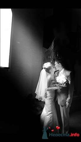 Фото 82991 в коллекции Свадебные фотографии от aallaa  - aallaa.net