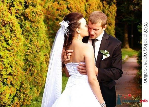 Фото 82992 в коллекции Свадебные фотографии от aallaa  - aallaa.net