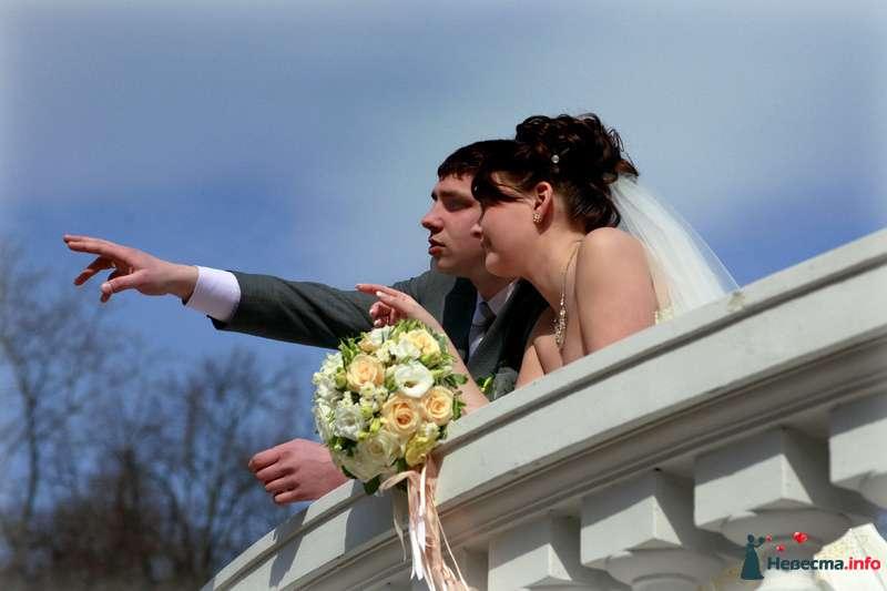 Фото 85548 в коллекции Мои фотографии - Видео студия La Fete - свадебные фото