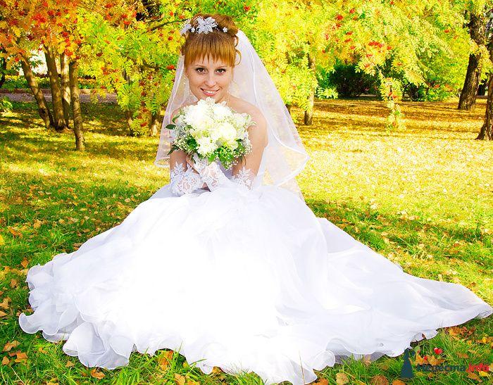 Фото 83548 в коллекции Свадебная фотосъёмка - Елена Леонидовна