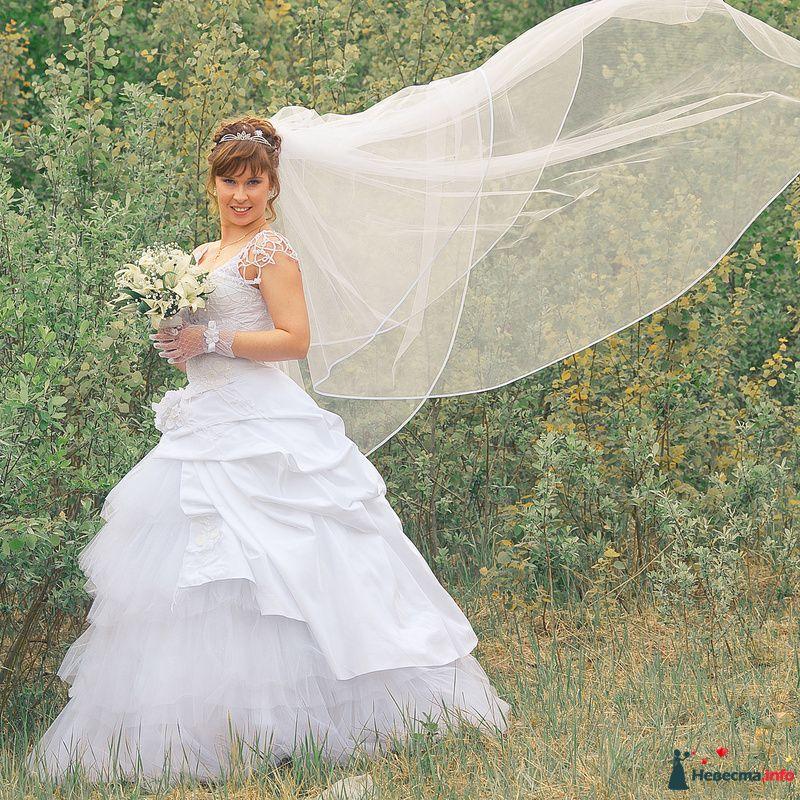 Фото 117772 в коллекции Лето 2о1о - Фотограф Сергей Королёв