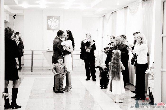 Фото 31366 в коллекции Наталья и Сергей. 19 сентября 2008 - Анна Горбушина - фотоагентство SunStudio