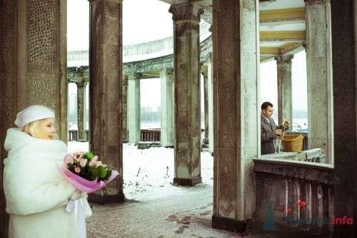 Фото 12947 в коллекции Свадебное - Фотограф Елена Зотова