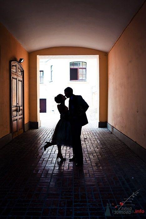 Фото 32065 в коллекции Свадебное - Фотограф Елена Зотова