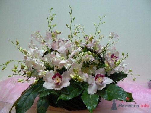 """композиция """"Орхидеи и ландыши"""" - фото 10784 Салон  цветов """"Богиня Флора"""""""