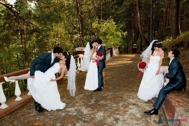 Фото 87363 в коллекции Amatour (свадебное) - Amatour