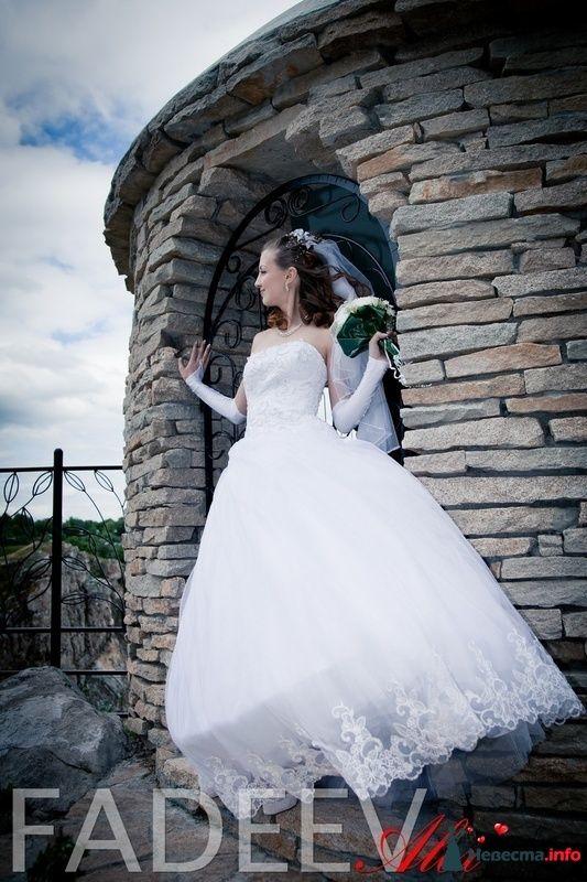 Фото 115181 в коллекции Свадьба Натальи и Александра - Amatour