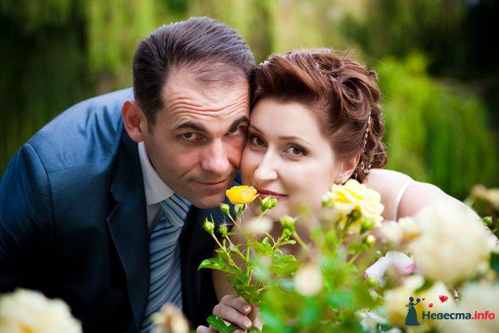 **** - фото 129002 Дмитрий Коробкин. Свадебный фотограф.