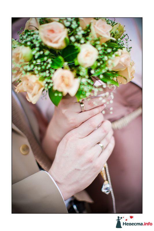 **** - фото 129056 Дмитрий Коробкин. Свадебный фотограф.