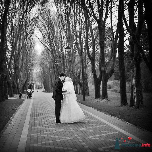**** - фото 129218 Дмитрий Коробкин. Свадебный фотограф.