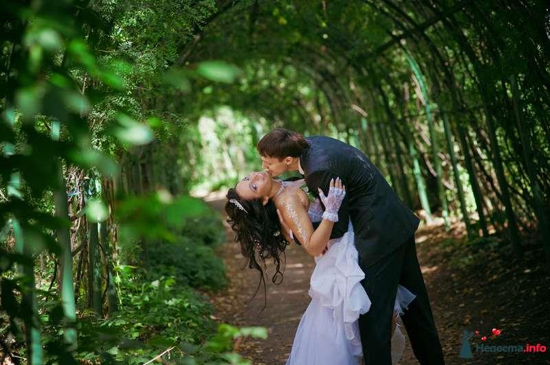 Фото 89212 в коллекции Свадьба - Любовь Ю.