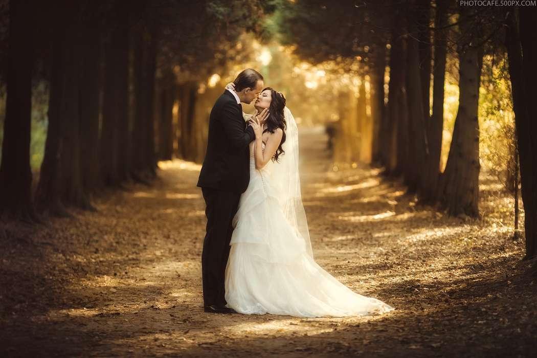 что свадебные фотографы минск лучшие стихи Стишки