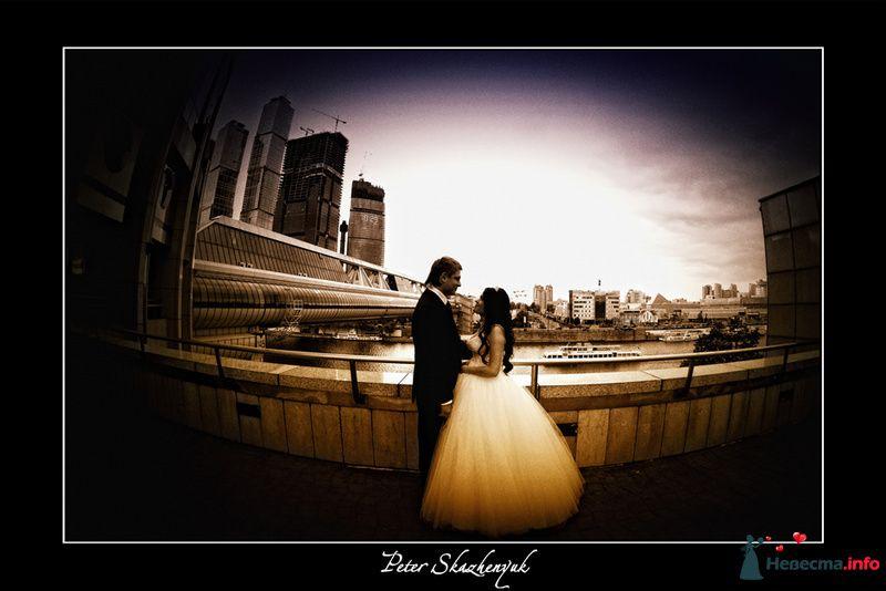 Свадебный фотограф - фото 88592 Видеооператор Алексей Никулин