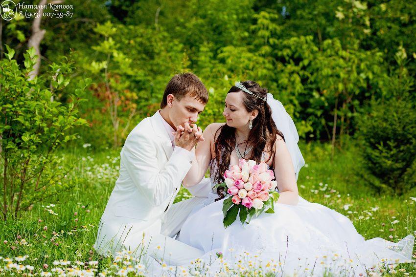Фото 721223 в коллекции Мои фотографии - Фотограф и видеограф - Наталья и Сергей Котовы