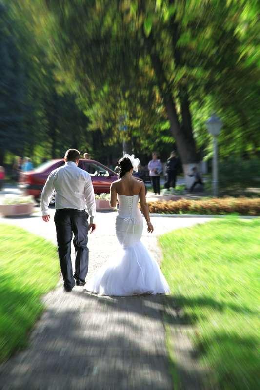 Фото 2313476 в коллекции Свадебные фото - Видеограф Пичугин Антон