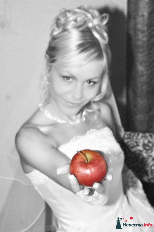 Фото 112332 в коллекции Моя свадьба!!! - Вита62