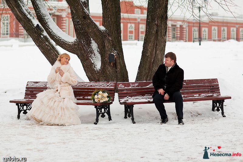 Фото 89501 в коллекции Свадьбы - Фотограф Гришин Александр