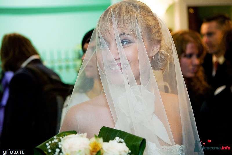 Фото 89502 в коллекции Свадьбы - Фотограф Гришин Александр