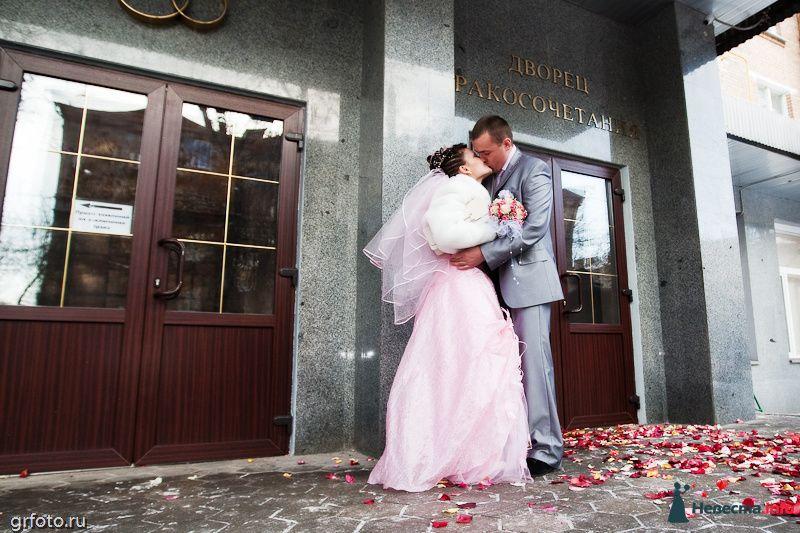 Фото 89505 в коллекции Свадьбы - Фотограф Гришин Александр