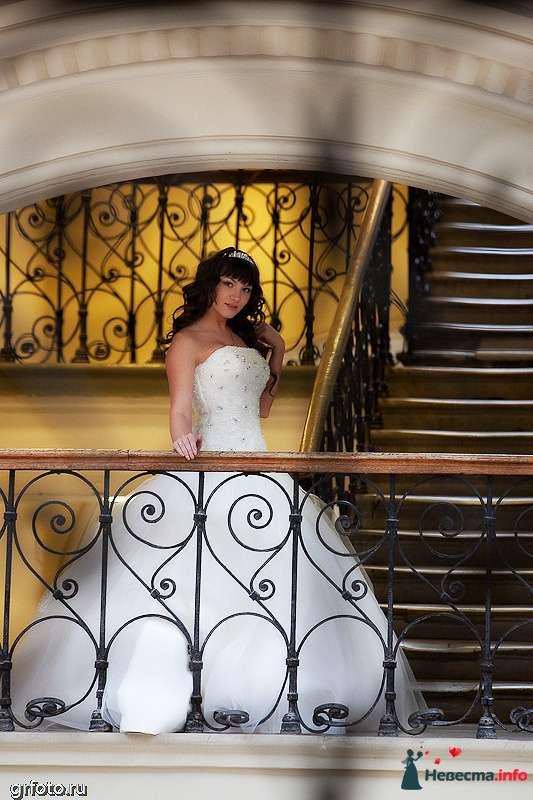 Фото 89555 в коллекции Свадьбы - Фотограф Гришин Александр