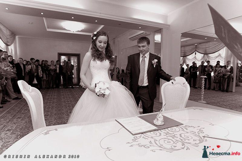 Фото 102069 в коллекции Свадьбы - Фотограф Гришин Александр