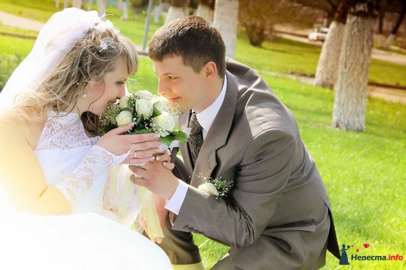 """Фото 100354 в коллекции Свадебные фотографии 2012-2013 - Студия """"Лидер"""", фото и видеосъёмка"""