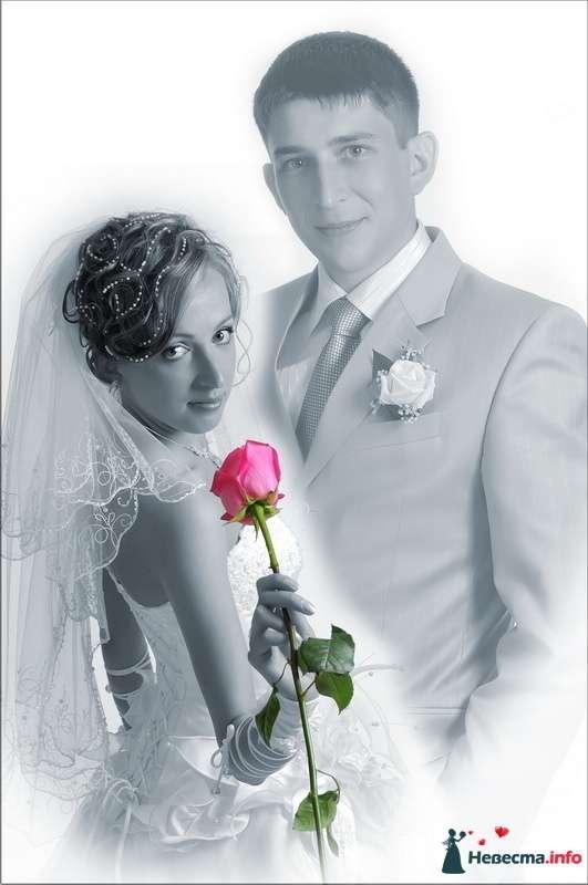 Фото 94745 в коллекции Из разных свадеб - Фотостудия Александра Золотарёва