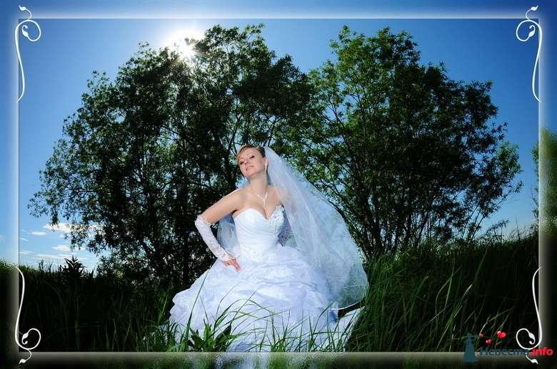 Фото 123951 в коллекции Из разных свадеб - Фотостудия Александра Золотарёва