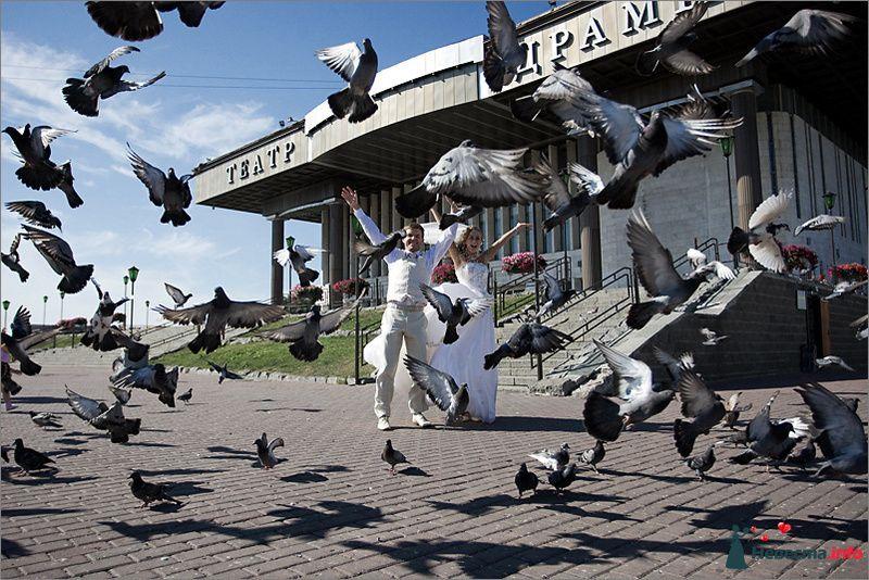 Фото 90837 в коллекции Моменты - LevBodrov