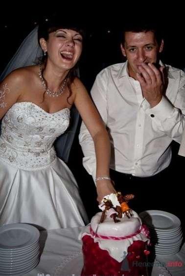 Фото 65033 в коллекции Свадебные фото - Поля