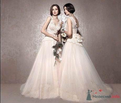 Династия - фото 78944 Невеста01