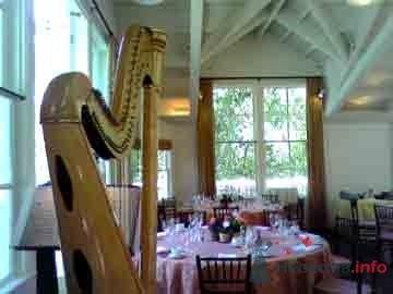 Фоновая музыка на свадьбе - фото 6114 Yana_ARFASOUND