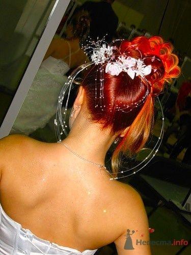 """Фото 6374 в коллекции наши работы - Салон красоты и косметологии """"АфродитаSPA"""""""