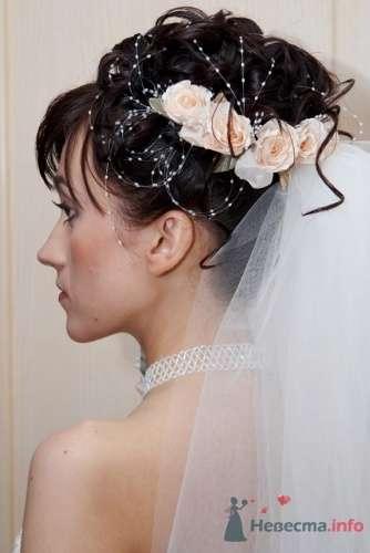 """Фото 6376 в коллекции наши работы - Салон красоты и косметологии """"АфродитаSPA"""""""
